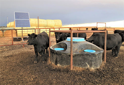 Livestock Watering Systems Water Ionizer